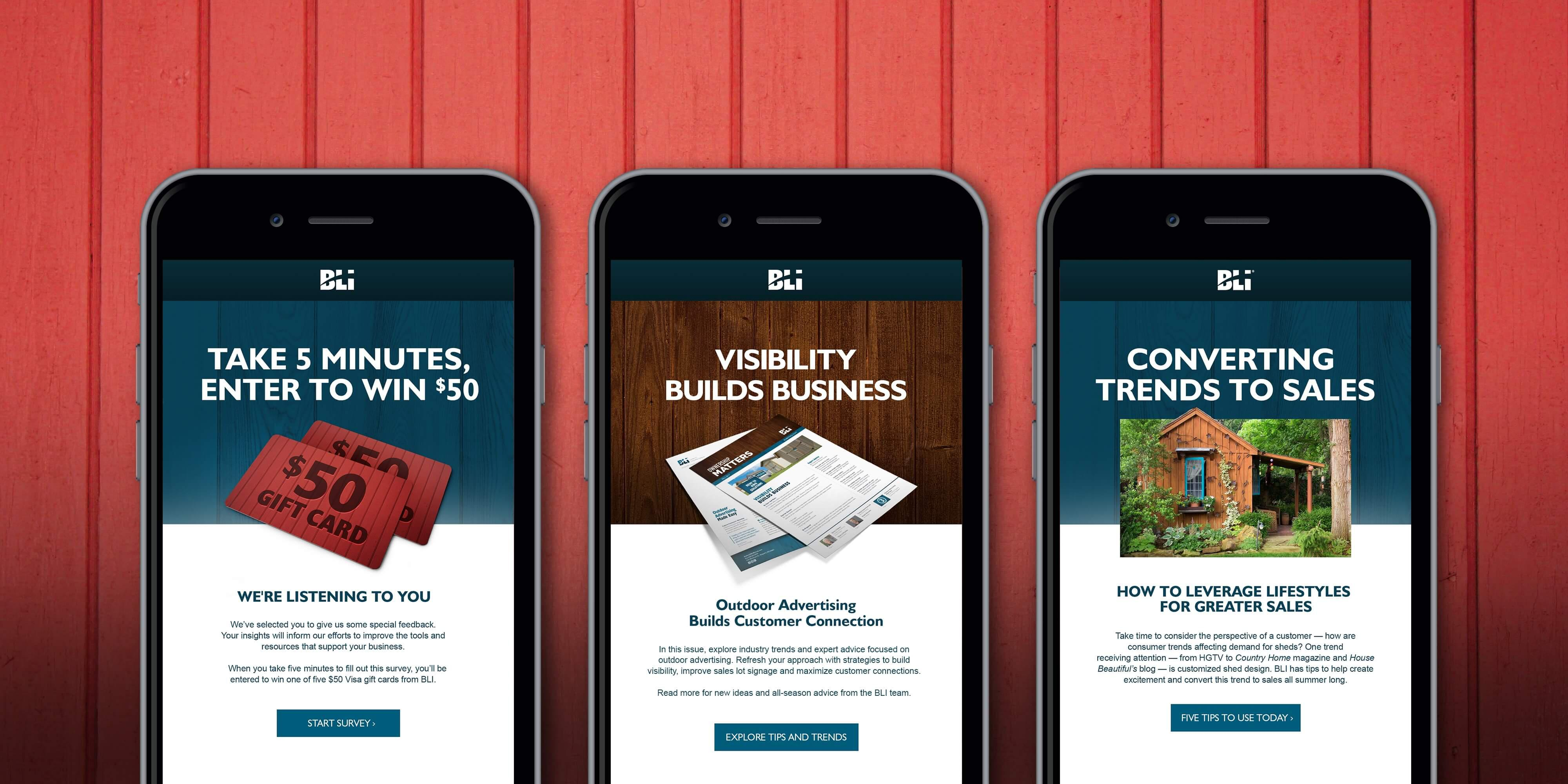 BLI Rentals email campaign examples