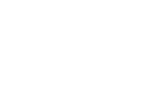 Disability Supports Logo